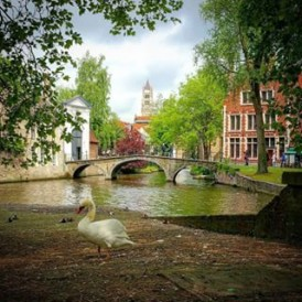 Day 12 of the #ExpatExplore #EuropeEscape tour - the final day of the tour takes us back to #London, via the stunning medieval city of #Bruges in #Belgium. Follow Jamie (@skykapture) as he captures each day on the road as a tour leader during the (very) busy summer #travel season in #Europe!