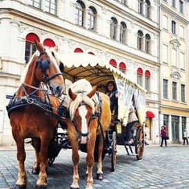 Day 5 of the #ExpatExplore #UltimateEurope tour - on our way to Czech out Prague we'll stop off in the German city of #Dresden. Virtually rebuilt from the ground up after bombing attacks in WW2 destroyed the city centre, Dresden is immaculate and stylish. Try some of the local German food - such as Bratwurst, and have a wander around the beautifully paved streets. Follow Laura ( @lauratourleader) as she captures her experiences as an Expat Explore tour leader across #Europe.